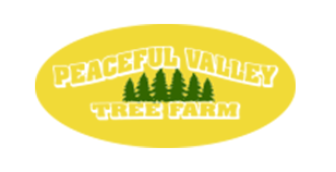Peaceful Valley Tree Farm